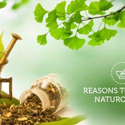 naturotherapy-blog