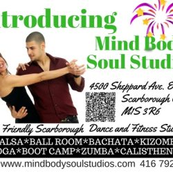 Introductory MBSS flyer